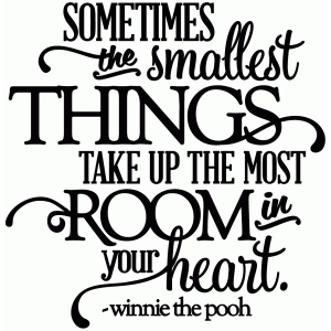 sometimes the smallest things - room in your heart - vinyl phrase