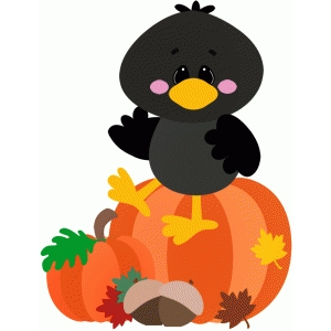 crow sitting on pumpkin halloween