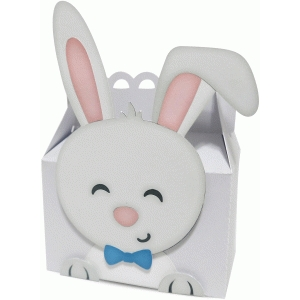 cute bunny boy box