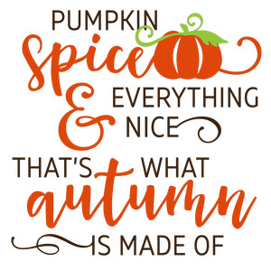 pumpkin spice & everything nice phrase