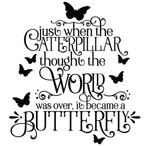 caterpillar into a butterfly inspirational quote