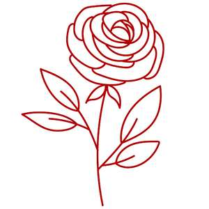 single rose flower stalk