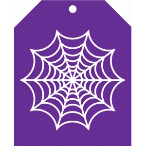 spiderweb tag