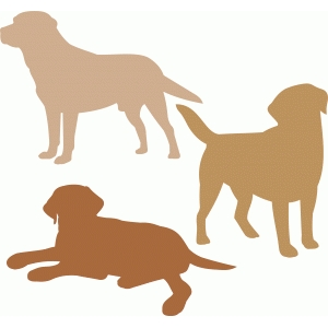 labrador dog set
