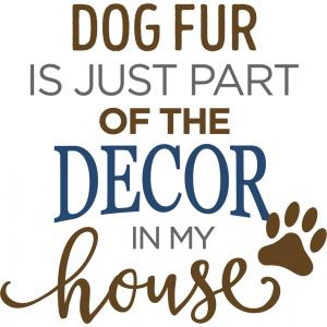 dog fur is part of decor phrase