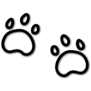 paw doodles
