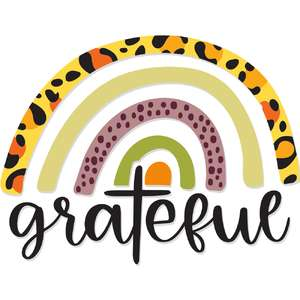 grateful leopard print rainbow