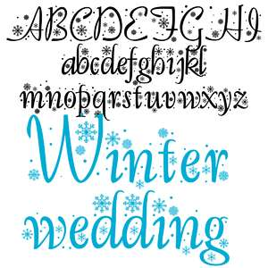 zp winter wedding