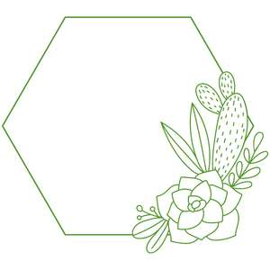 succulent hexagon foliage frame