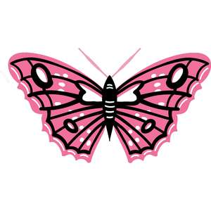 intricate pink butterfly art