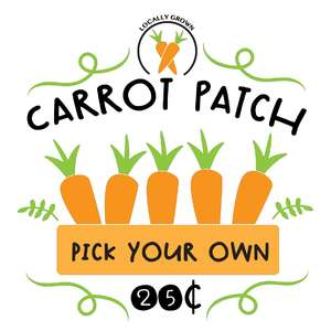 locally grown carrot patch