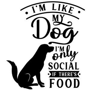 like dog only social if food