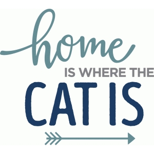 home is where cat is phrase