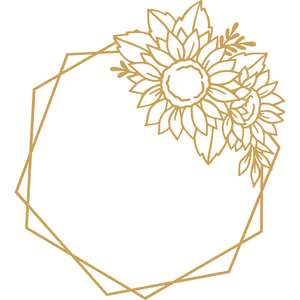 sunflower hexagon frame