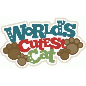 world's cutest cat title
