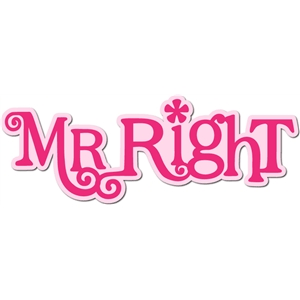 'mr. right' title