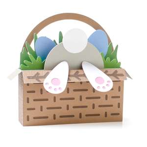 easter basket bunny 3d box card
