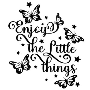 enjoy the little things butterfly quote