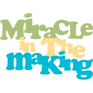 miracle in the making phrase