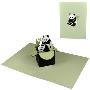 panda pop up box in a card