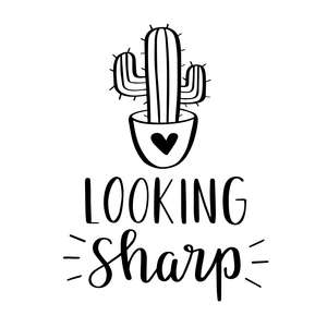 looking sharp cute cactus phrase
