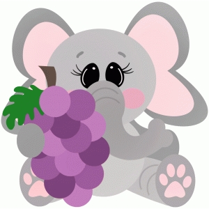 elephant holding grapes