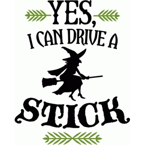i can drive a stick - phrase