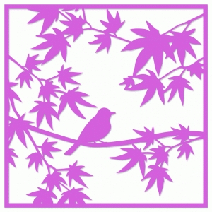 bird in maple tree spring scene