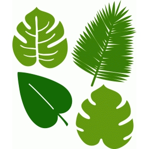 4 tropical leaves