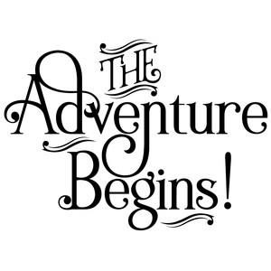 the adventure begins quote