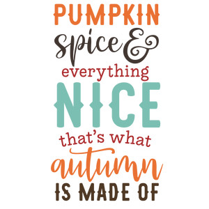pumpkin spice autumn made of