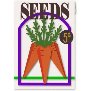 3d carrot seed packet