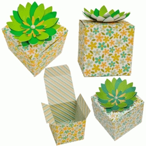 3d flower green box