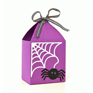 spiderweb favor box
