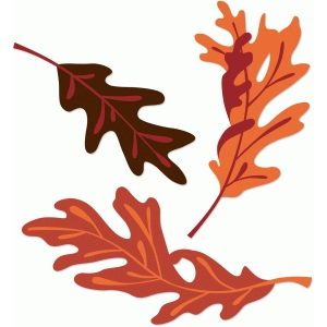 oak leaves set