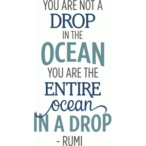 you are the entire ocean in one drop phrase