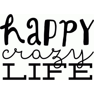 happy crazy life