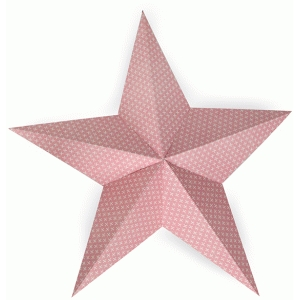 5 pointed star decor
