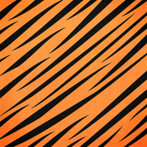 zoo tiger stripes paper