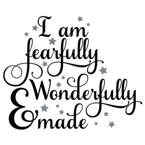 i am fearfully & wonderfully made