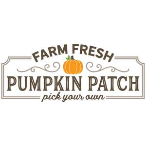 farm fresh pumpkin patch