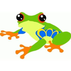 colorful tree frog