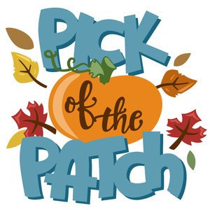pick of the patch fall phrase
