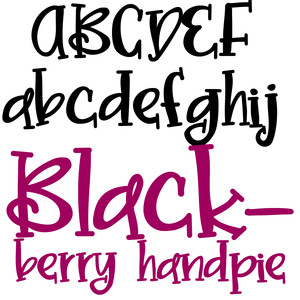 zp blackberry handpie