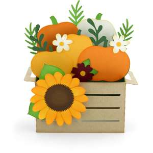 box card crate pumpkins