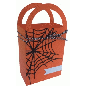 spiderweb bag