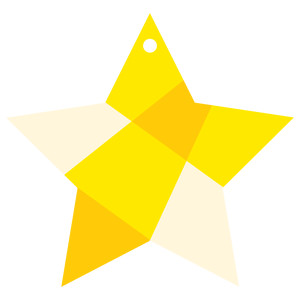 faceted star ornament tag