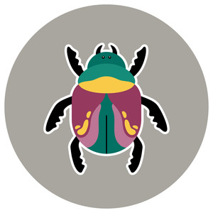 beatle bug icon