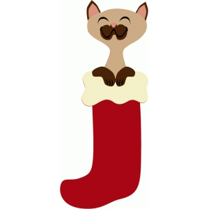 kitty in christmas stocking