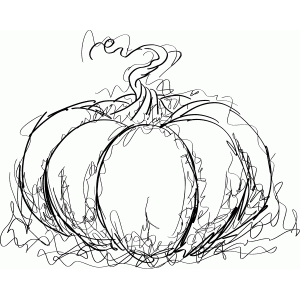 pumpkin sketch